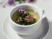 Gribe Ve Bağışıklık Sistemine Etkili Hancı Çayı