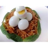 Çocuklar İçin Bıldırcın Yumurtasının Farklı Sunumu