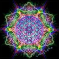 Ruhsal, Duygusal, Düşünsel Ve Fiziksel Yapılarımız