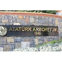 Atatürk Arboretumu...