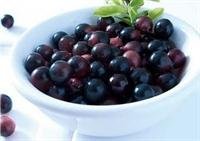 Acai Berry Nedir?