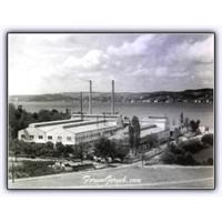 Türkiye'nin İlk Cam Üreticisi: Şişecam