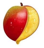 Mangonun Faydalar