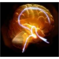 Kırkbeşinden Sonra Beynimize Ne Oluyor?
