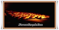 İlk Ekmek Ne Zaman Yapılmış?