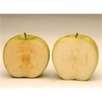 Amerikalı Bir Çitçinin İcadı: Kararmayan Elma!