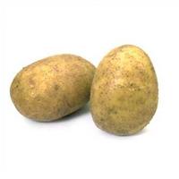 Kolon Kanserine Karşı Patates Kürü.