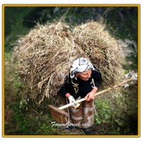 Esprili, Hırçın, Ve Cefakar Karadeniz Kadını