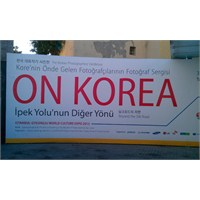 Dünya Kültür Expo 2013 Notları