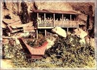 Tana Toraja | Endenozya