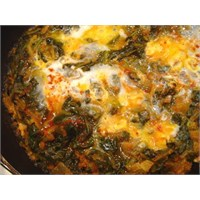 Yumurtalı Ispanak Tarifim