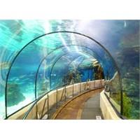 Barselona'nın Ünlü Akvaryumu - Aquarium Barcelona