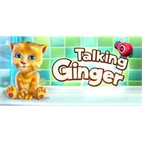 Talking Ginger, Yeni Konuşan Kedi Oyunu Karşımızda