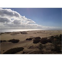 Kanarya Adaları: Maspalomas Playa De İngles