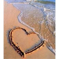 Kalp İle Mantık Buluşursa!
