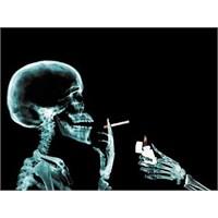 Sigarayı Bıraktıktan Sonra Neler Yaşanır?