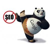 Google Panda Algoritması İle Seo Devri Bitiyor Mu?