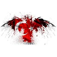 İstiklal Marşı, Sesli, Yazılı