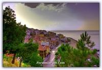 Tirilye - Zeytinbağı   (mudanya - Bursa)