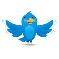 Twitter Kuşunun İsmini Biliyor Musunuz?