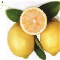 Limon Kabuğunun Mucizeleri Bitmez!