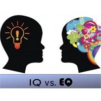 Duygusal Zeka (Eq) İle İq Arasındaki Fark Nedir?