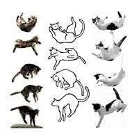 Kediler Nasıl 4 Ayakları Üstüne Düşer ?