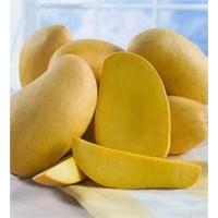 Mango Meyvesinin 7 Muhteşem Faydası