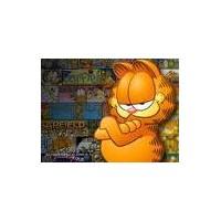Garfield Felsefesi :)