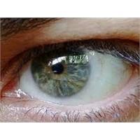Göz Tansiyonu İçin Bitkisel Tedavi