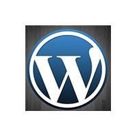 Wordpress Giriş Sayfası, İntro Reklam Alanı Ekleme