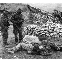 Cezayir Savaşi