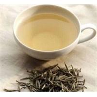 Beyaz Çay Nedir? Beyaz Çayın Faydaları Nelerdir?
