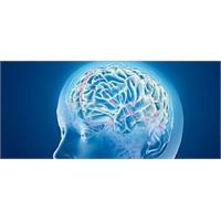 Güçlü hafıza için yenilmesi gereken 4 besin