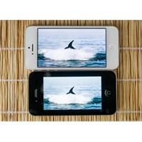 İphone 5s Dedikodularına Son Noktayı Koyalım