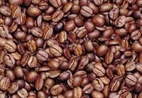 Kahve Nin Faydaları