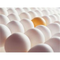 2 Adet Yumurta İle Zayıflama