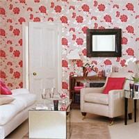Kırmızılı Oturma Odaları
