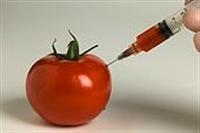 Hormonlu Yiyecekler Nasil Anlasilir?
