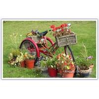 Eski Bisikletinizle Fark Yaratın