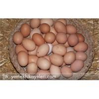 Yumurta Ve Tavuk Nasıl Pişirilmeli?