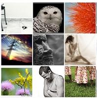 Flickr Dan Çok Özel Resimler