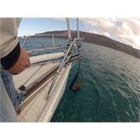 Las Palmas Yolunda | Rüzgarla İnatlaşmak