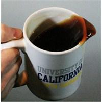 Dökülen Kahvenin Ardındaki Fizik