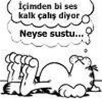 Garfield'ı Seviyorum