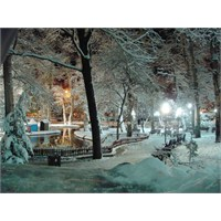 Kışa Övgü…