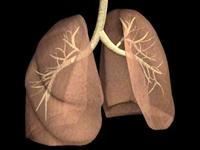 Akciğer Kanseri Erkekleri Vuruyor !