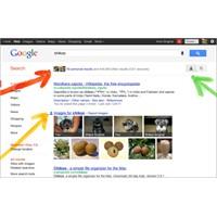 Google'dan 3 Yeni Özellik!