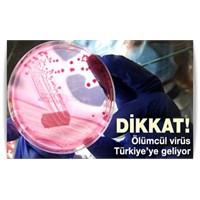 Dikkat! Ölümncül Virüs Türkiye'ye Geliyor