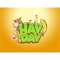 Hay Day De Nedir?